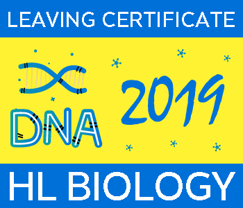 Leaving Certificate Biology | Higher Level | 2019 Exam Paper Solution course image