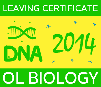 2014 Exam Paper Solution | Leaving Certificate | Ordinary Level | Biology course image