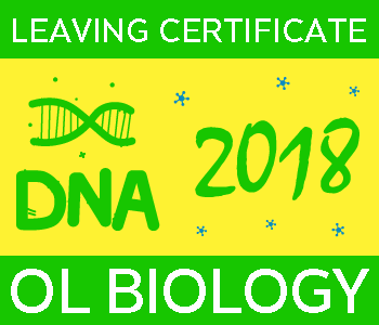 2018 Exam Paper Solution | Leaving Certificate | Ordinary Level | Biology course image