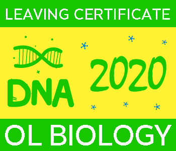 2020 Exam Paper Solution | Leaving Certificate | Ordinary Level | Biology course image